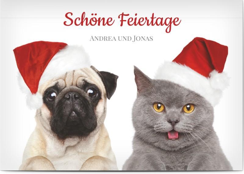 Lustige Weihnachtskarte mit Tieren